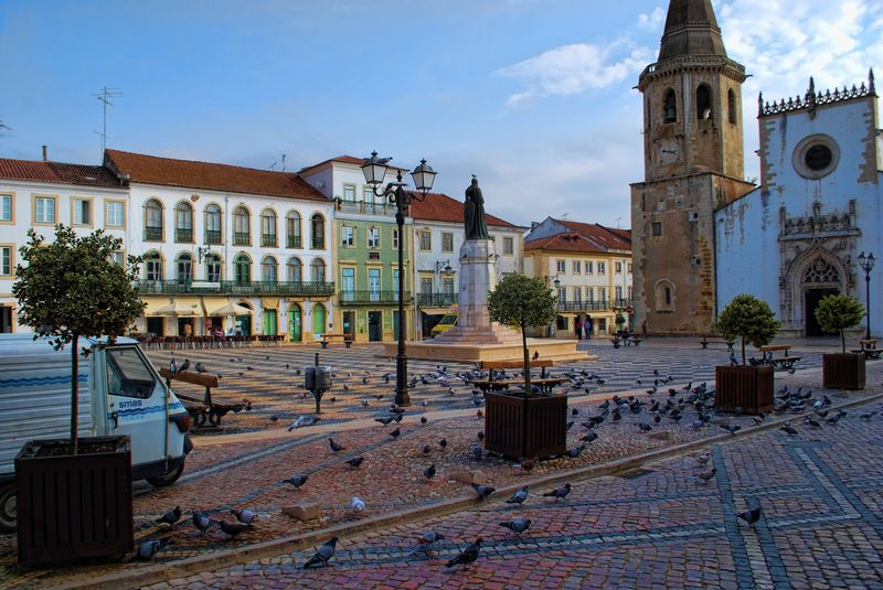 Pigeons near the statue of Gualdim Pais in the City of Tomar