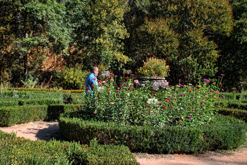 Gardener working at the Seven Hills National Forest in Tomar, Portugal