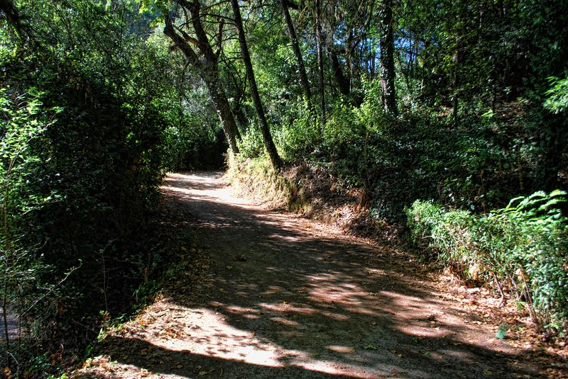 Walking route at Mata dos Sete Montes in the City of Tomar in Portugal