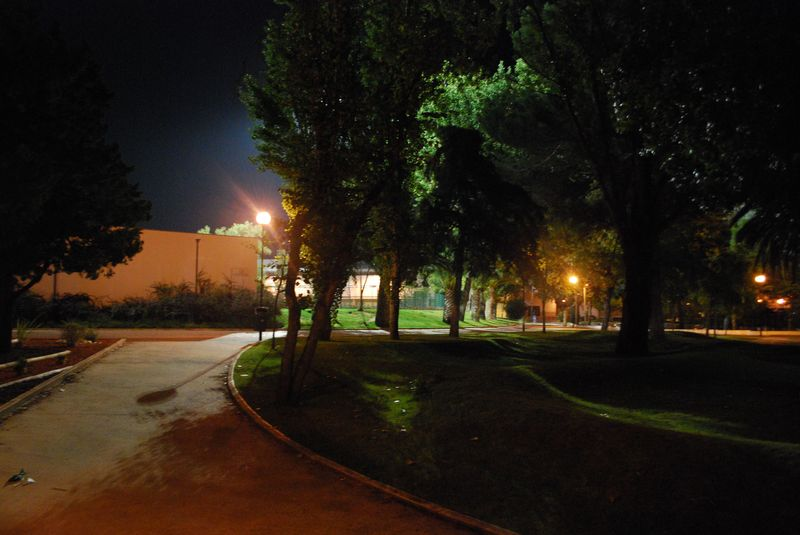 Grass waves at Mouchão Park at night in the City of Tomar
