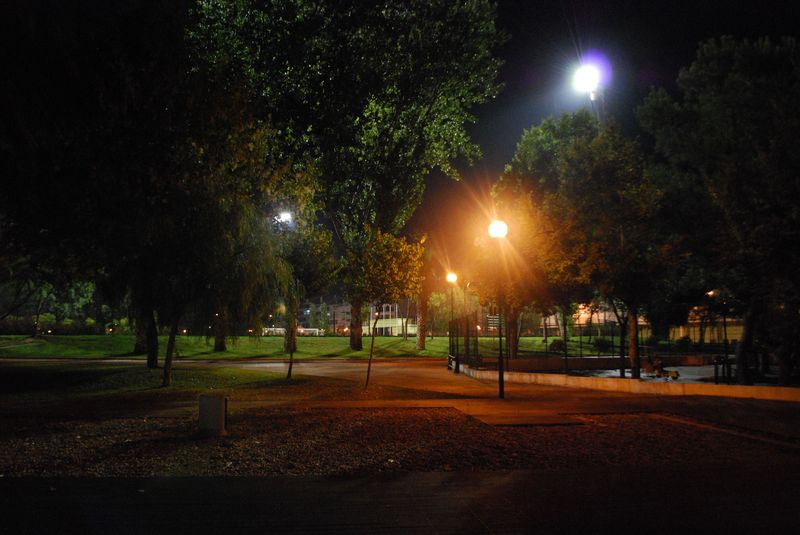 Mouchão Park at night in the City of Tomar in Portugal