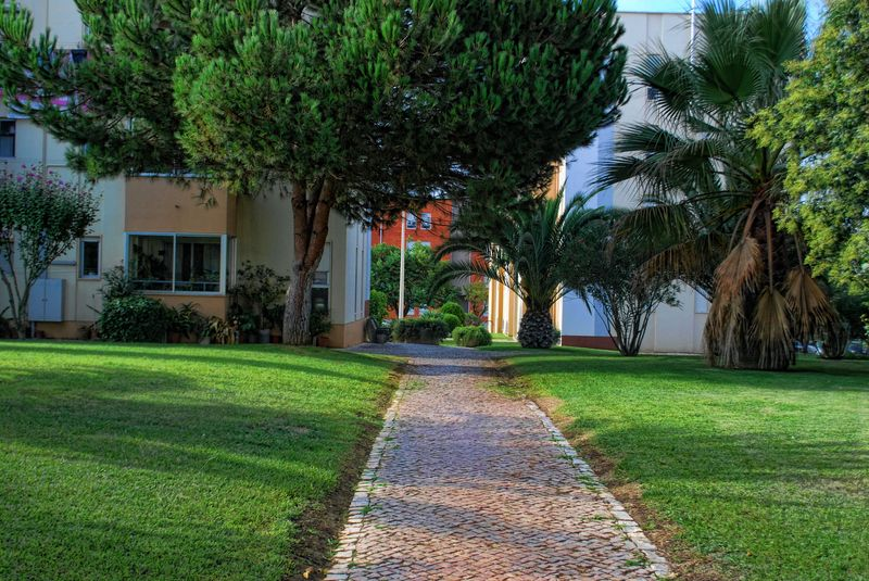 Cobblestone pathway at an urban garden in the City of Tomar in Portugal