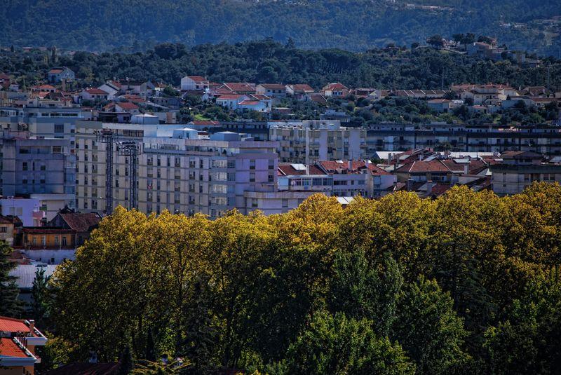 Panorama of Alameda Primeiro de Março in the City of Tomar