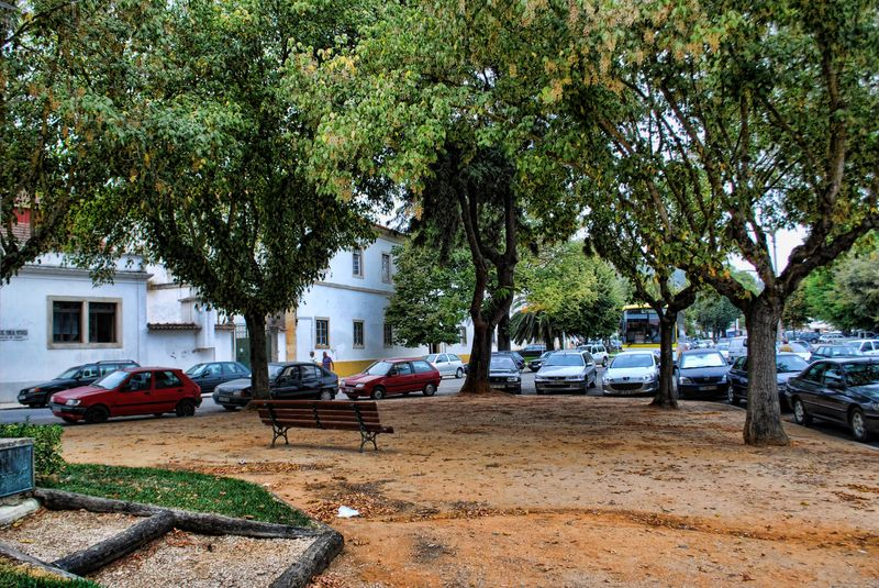 Green area at Varzea Grande in the City of Tomar in Portugal