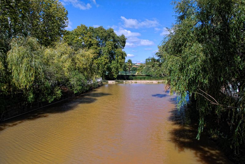 Muddy water of Nabão River at Mouchão Park in the City of Tomar