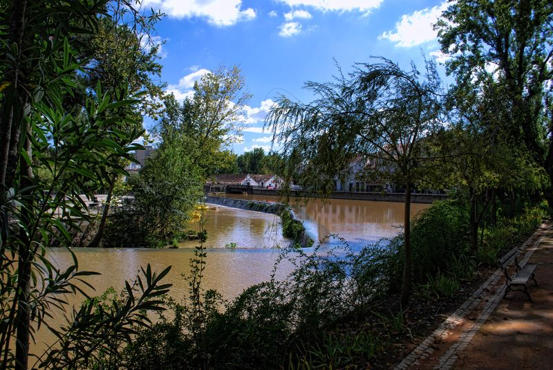 Muddy waters of Nabão River at the Island of Mouchão Park in the City of Tomar